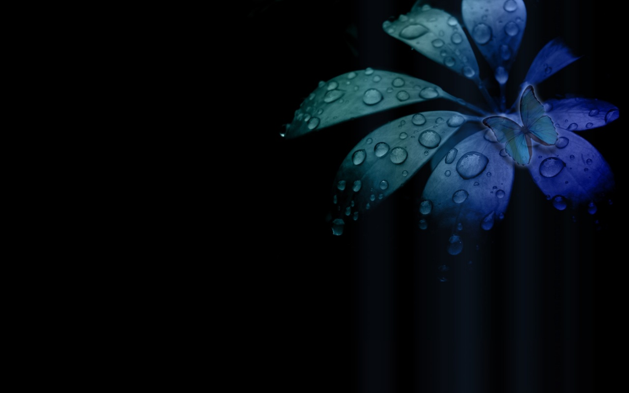 Blue Butterfly Backgrounds