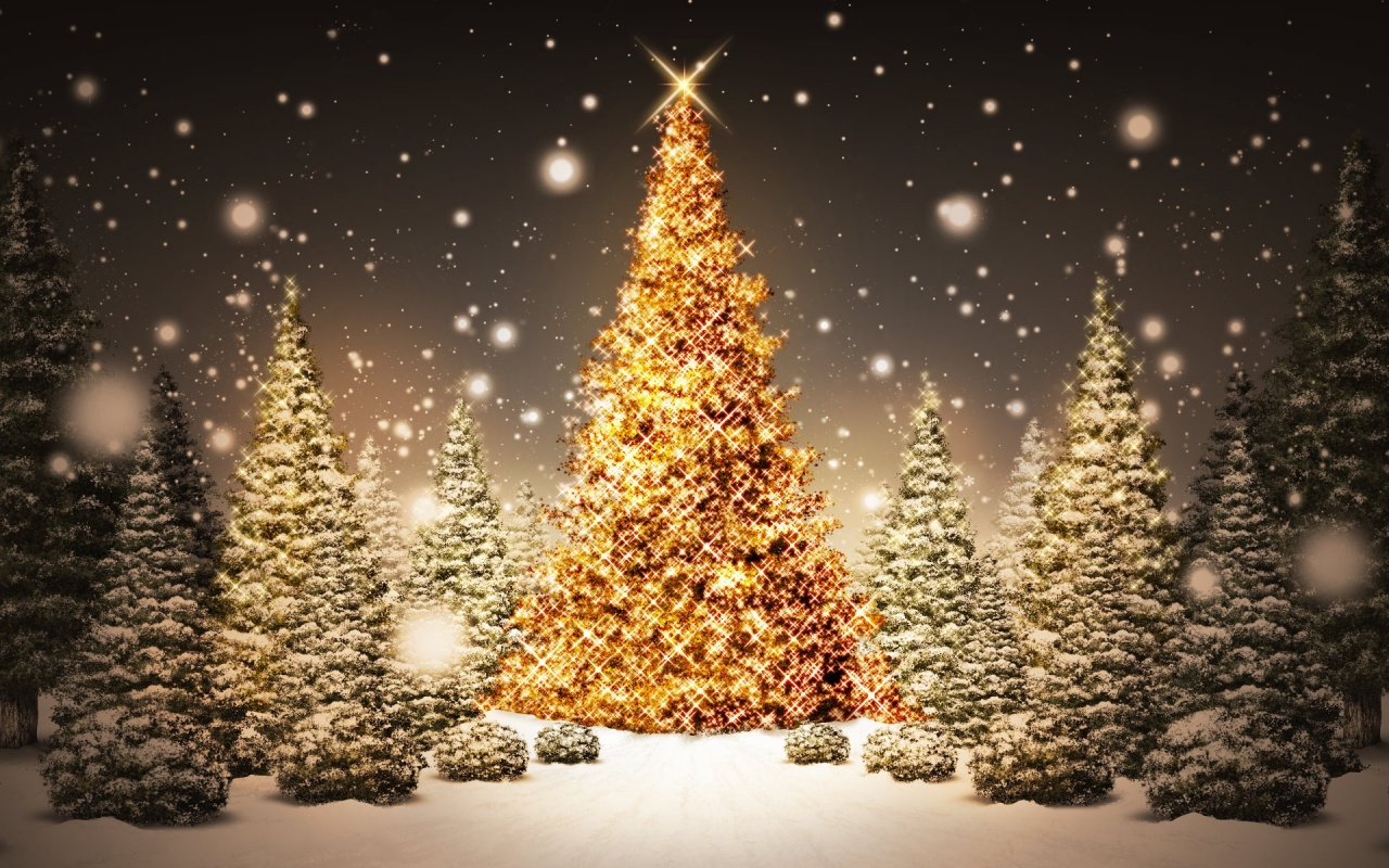 Christmas Tree Stars Backgrounds