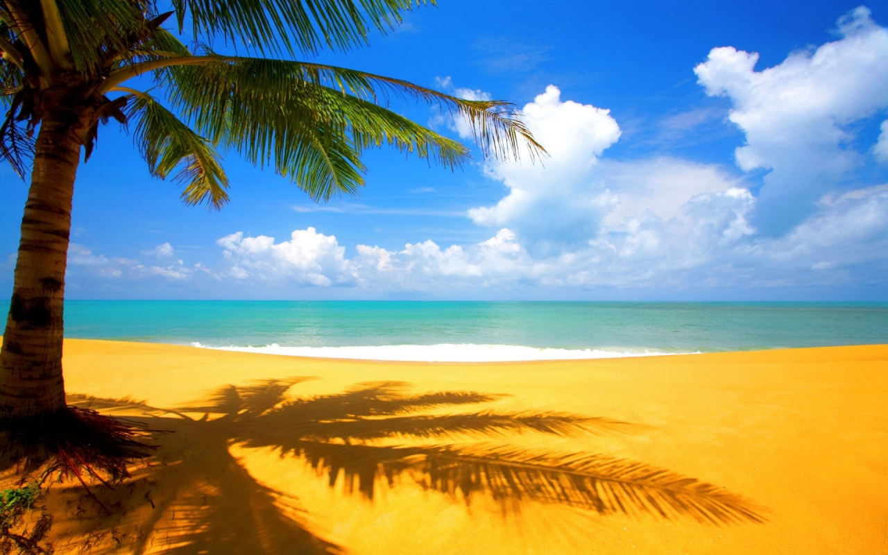 Golden Sand Beach Backgrounds