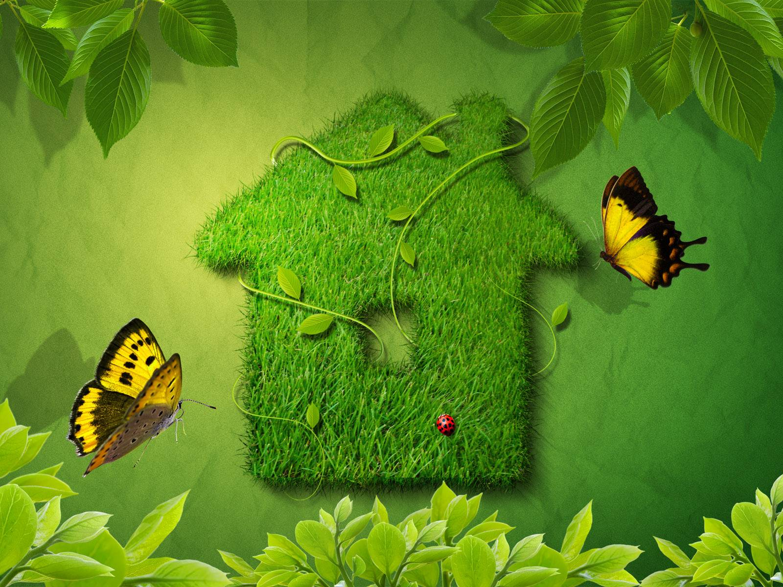 House Green Photoshop Pictures Backgrounds