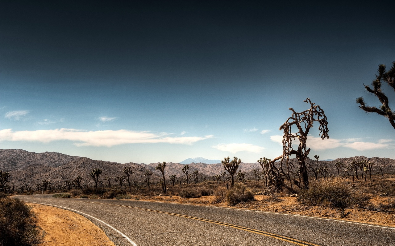 Lonesome Desert Road Backgrounds