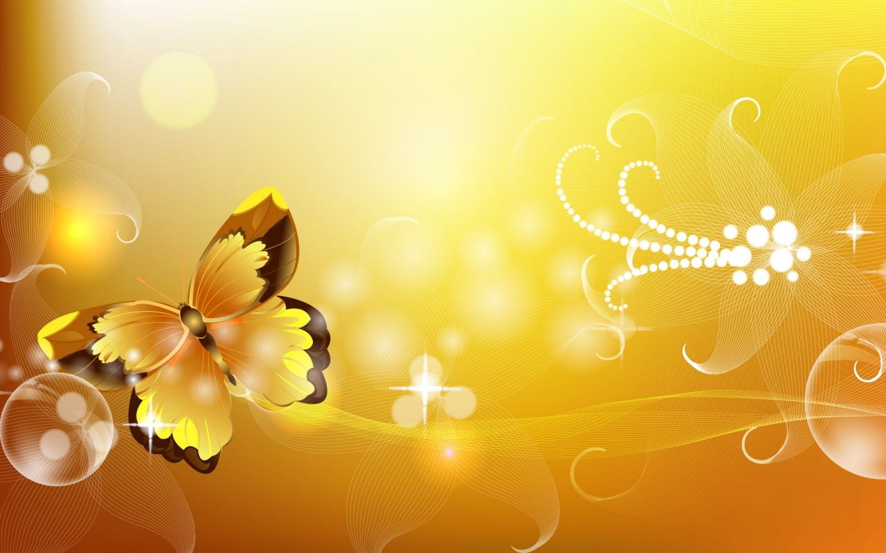 Orange Color Butterfly Backgrounds