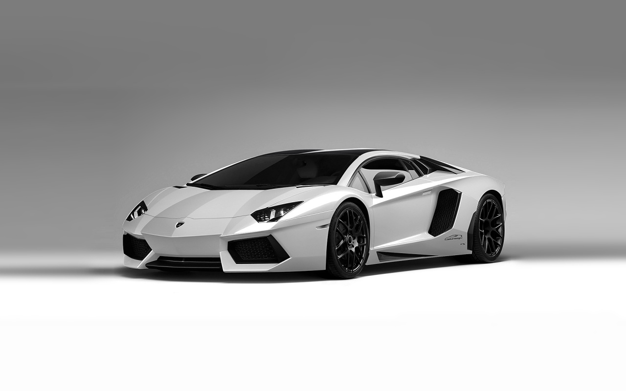 White Aventador Backgrounds
