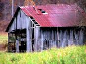 Abandoned Horse Barn in Autumn Backgrounds