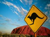 Ayers Rock Kangaroo World Backgrounds