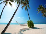 Bacardi Beach Tour Backgrounds