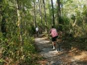 Bikers Leisurely Bike Backgrounds