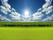 Bright Day Sunrise Backgrounds