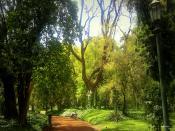 Buenos Aires Botanical Garden Backgrounds