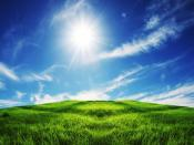 Clear Sky Grasslands Backgrounds
