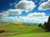 Cloudy Grass Fields Backgrounds