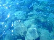 Crystal Blue, Lake Tahoe Backgrounds
