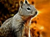 Digital Art Rodent Backgrounds