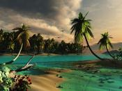 Droopy Palms Trees Islands Backgrounds