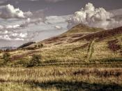 East Lomond Backgrounds