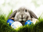 Easter Celebrations Backgrounds