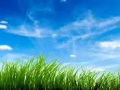 Green Grass Clear Sky Backgrounds