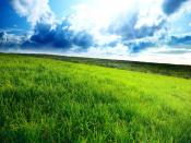 Green Land Backgrounds