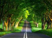 Green Nature Road Backgrounds