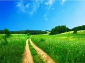 HD Green Scenery Backgrounds