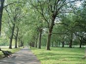 London Green Park Backgrounds