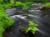 River Flow Backgrounds