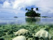 Scenery Islands South Aitutaki Pacific Backgrounds