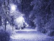 Snow Fall Park Backgrounds