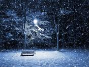 Snow Over Park Backgrounds