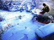Snowboarding Summer Sports Backgrounds