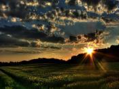 Spring Morning Sunrise Backgrounds