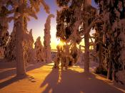 Sunset Snow Backgrounds