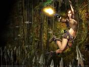 Tomb Raider Pc Windows Game Backgrounds
