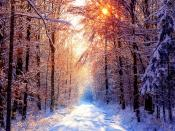 Winter Morning Backgrounds