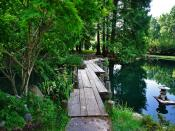 Wood Pool Bridge Backgrounds