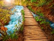 Wooden Way Backgrounds