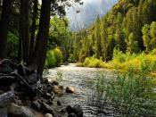 Yosemite River Flow Backgrounds